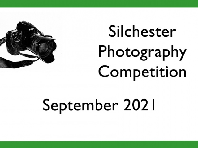 Photography Competition - VOTING